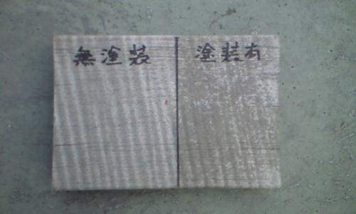 20100511-keinen.JPG